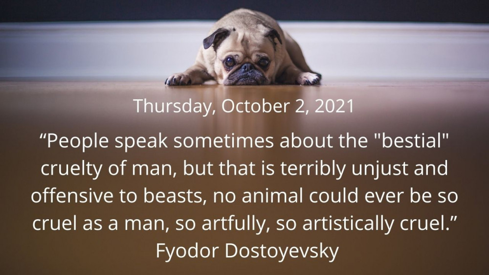 Quote for October 2