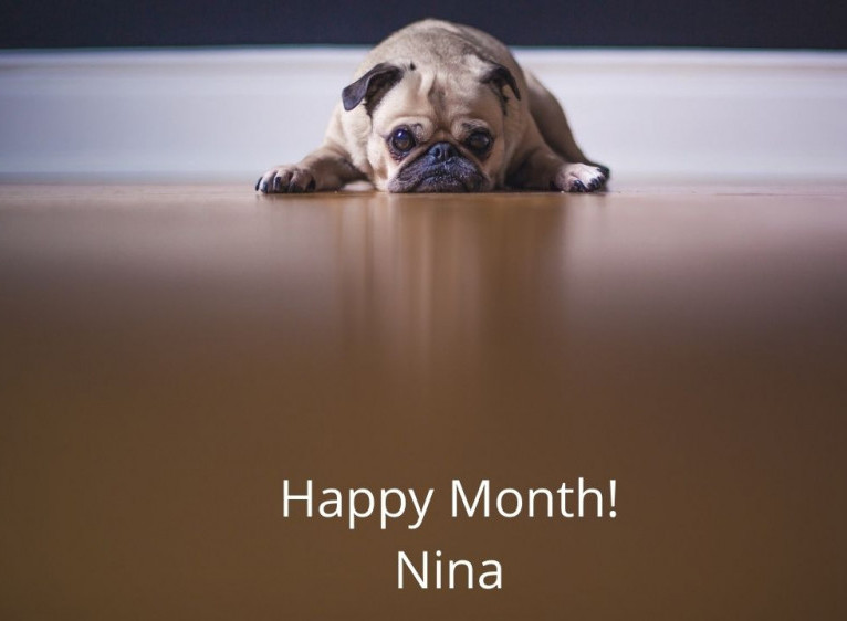 happy month