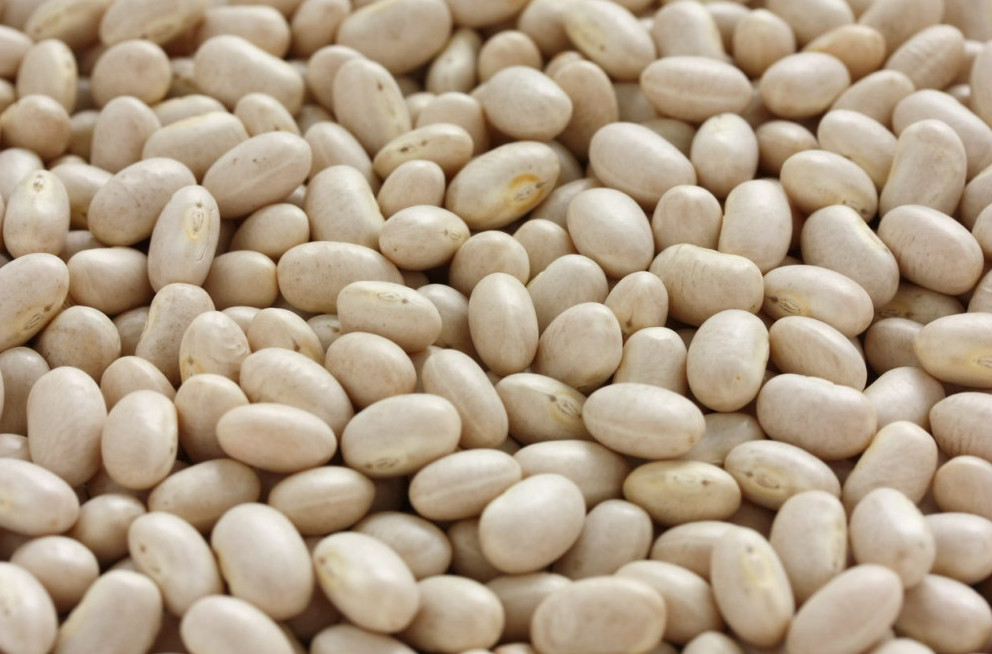 Navy Beans Are Beans Keto Friendly