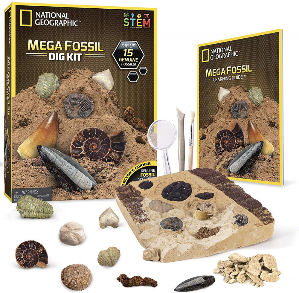 National Geographic Mega Fossil Dig Kit Dinosaur Toys For Kids