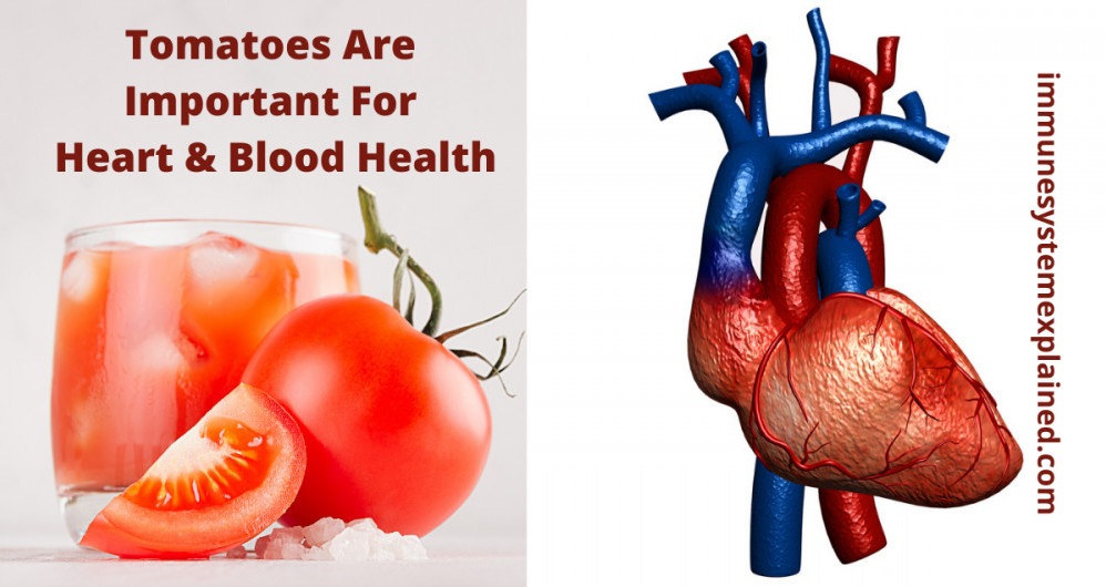 tomatoes-are-important-for-heart-and-blood-health