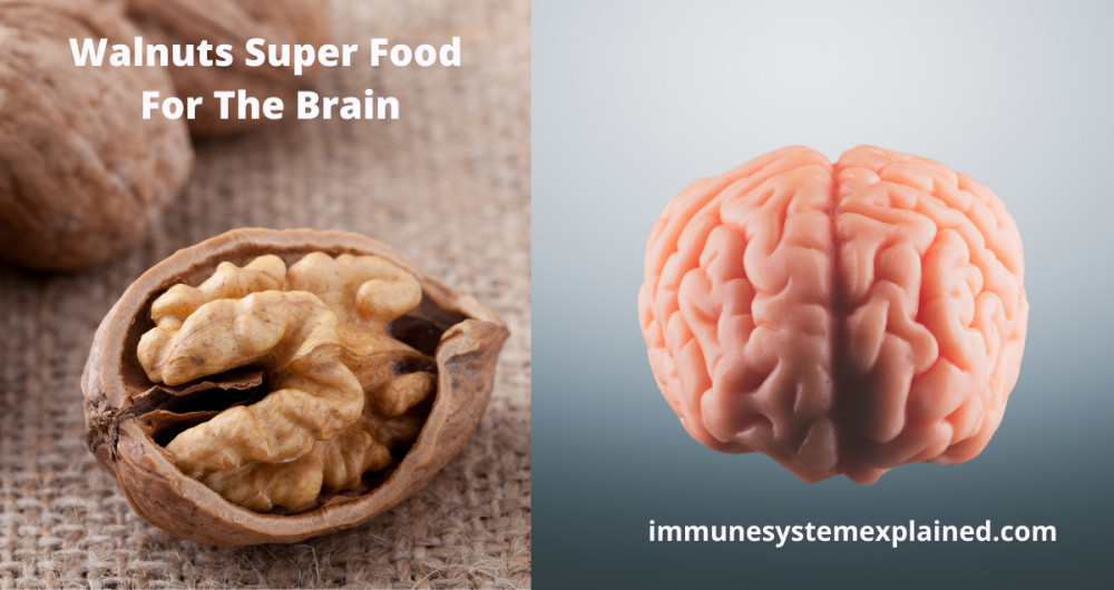 walnuts-super-food-for-the-immune-system
