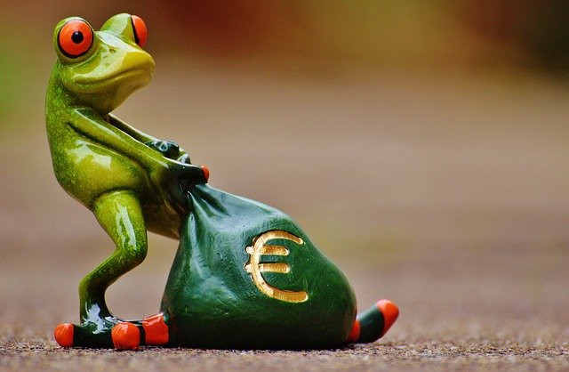 Frog lugging a sack of euros