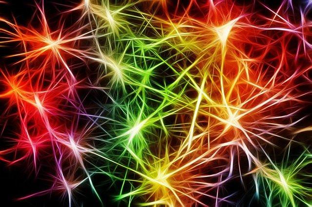 Multicolored neurons