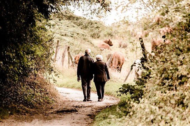 Elderly couple walking in nature