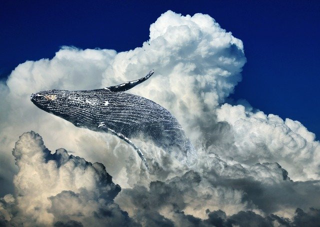Blue whale in clouds