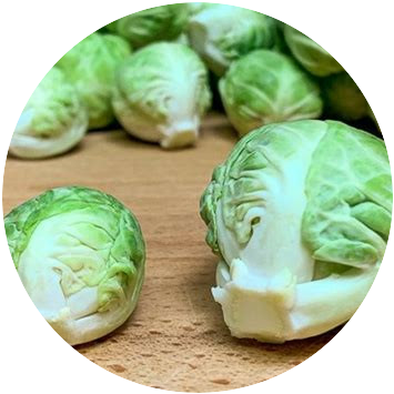 Picked Brussels Sprouts