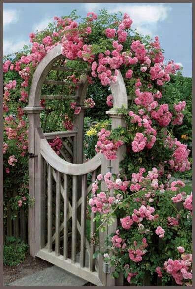 Garden gate with Roses