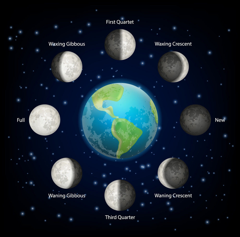 Moon Phases around Earth