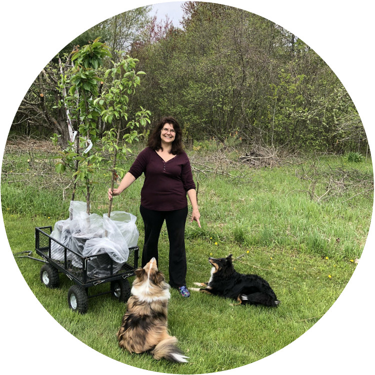 Me and my Shelties with an Apple Tree