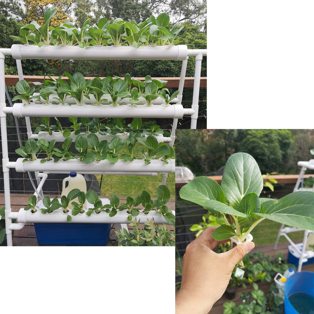 Hydroponics System PVC with 72 holes