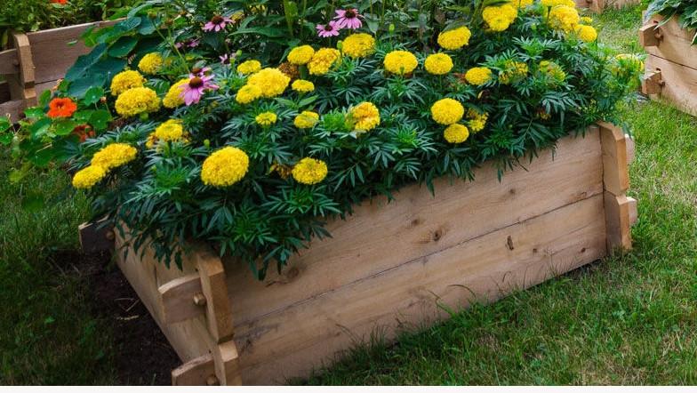 Farmstead Cedar Raised Garden Beds, 3'