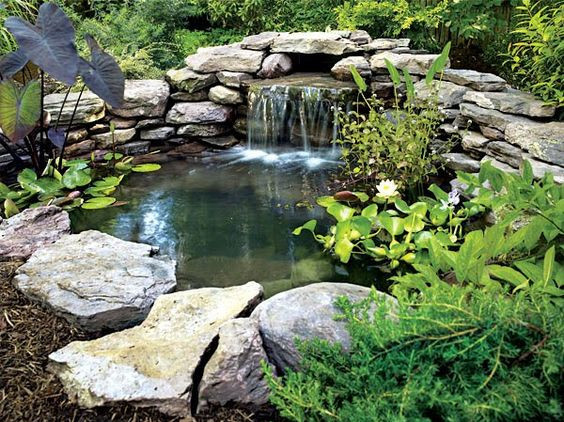 Water Garden with waterfall
