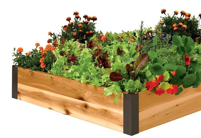 3' Raised Garden Bed from Gardener's Supply - 2021 Review - Raised Bed Garden Kits - Gardener's Supply