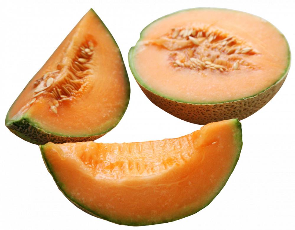 Harvested Cantaloupe