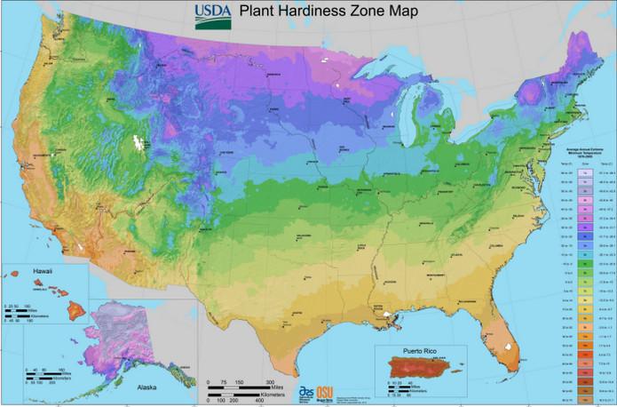 UDSA Hardiness Zone Map USA