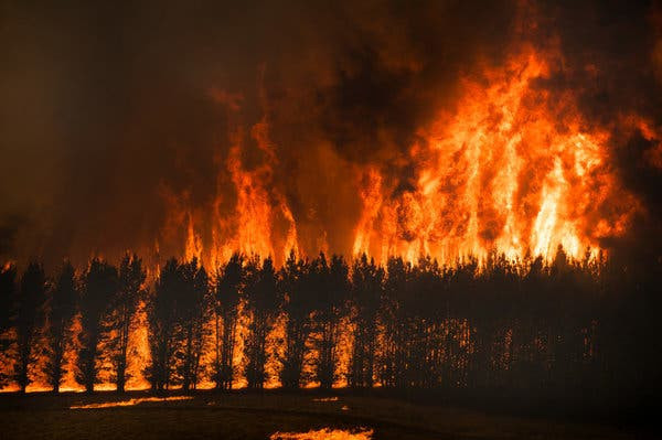 Fires as a consequence of climate change - high temperatures
