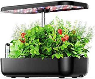 indoor water garden containers