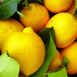 young living lemon oil benefits