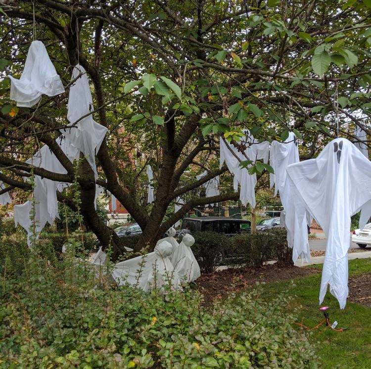 Floating Ghosts in Yard