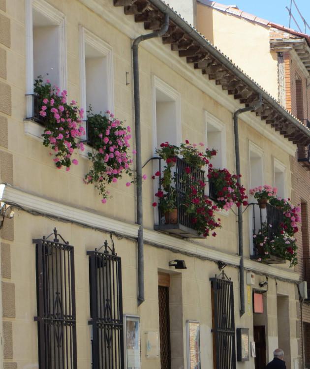European windowboxes