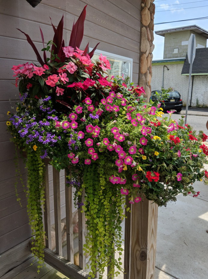 Windowbox attached to a railing