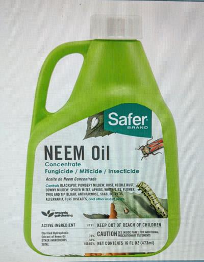 Safer Neem Oil