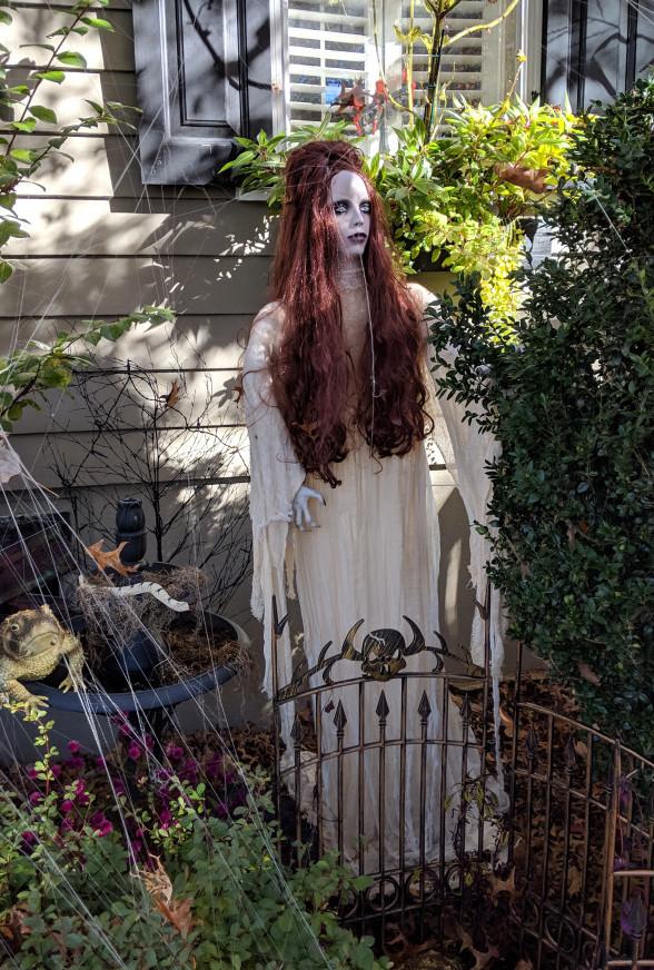 Spooky Yard Witch
