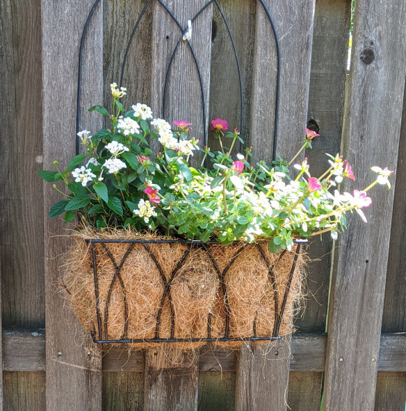 Flowerbox attached to fence