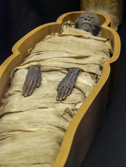 mummies in coffins
