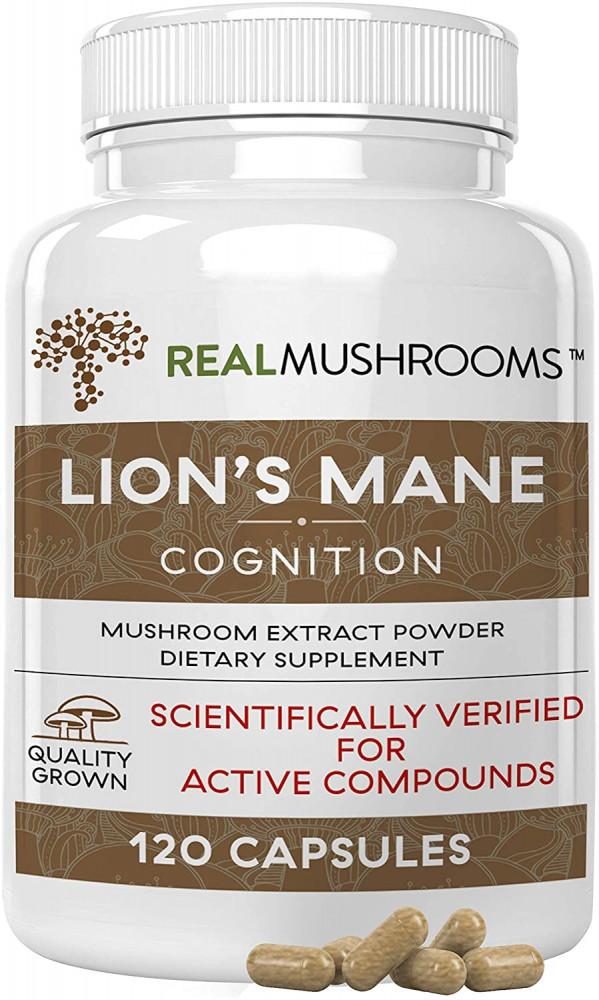 Lions Mane Cognition