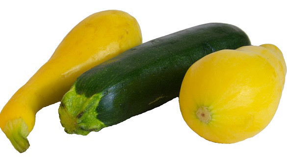 Green Zucchini Between Two Yellow Squash
