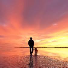 man walking his dog on beach at sunrise