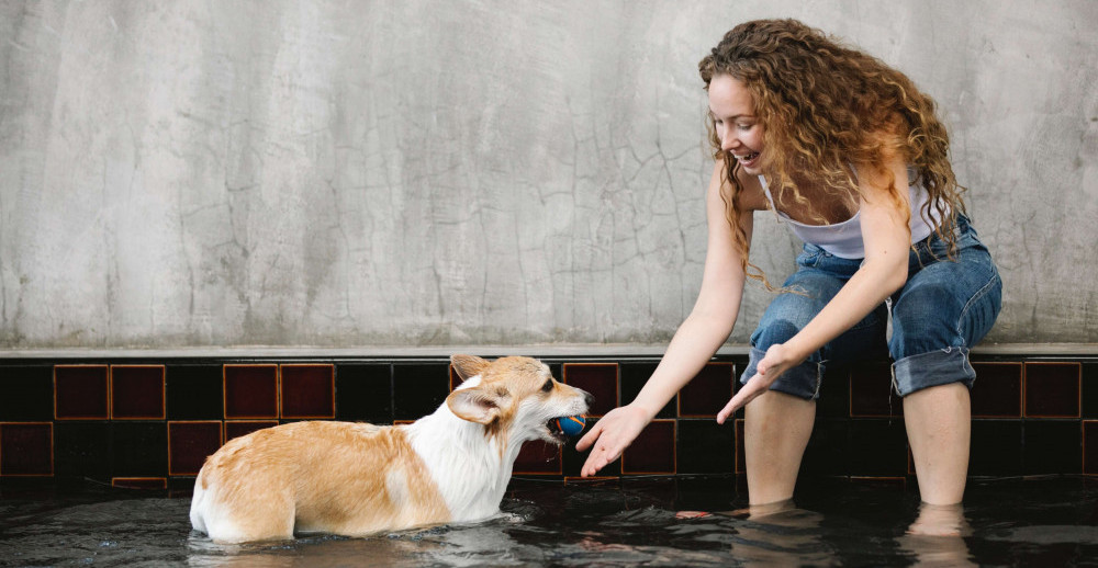 Dog In Shallow Pool with a lady