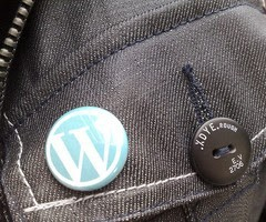 What exactly Is WordPress