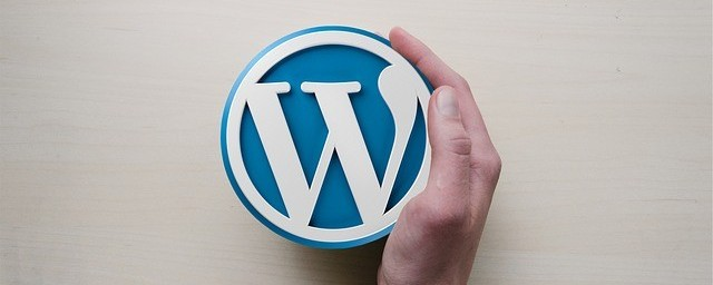 WordPress Theme and Plugins
