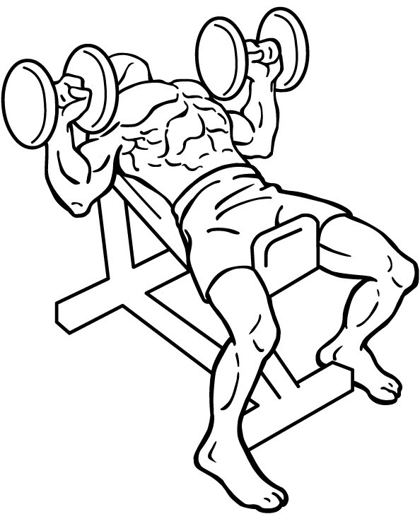 diagram of a man doing an incline dumbbell press