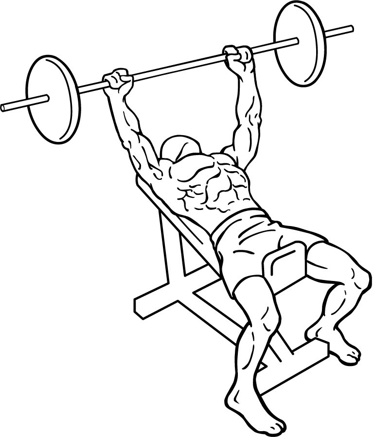 diagram of a man doing an incline barbell press