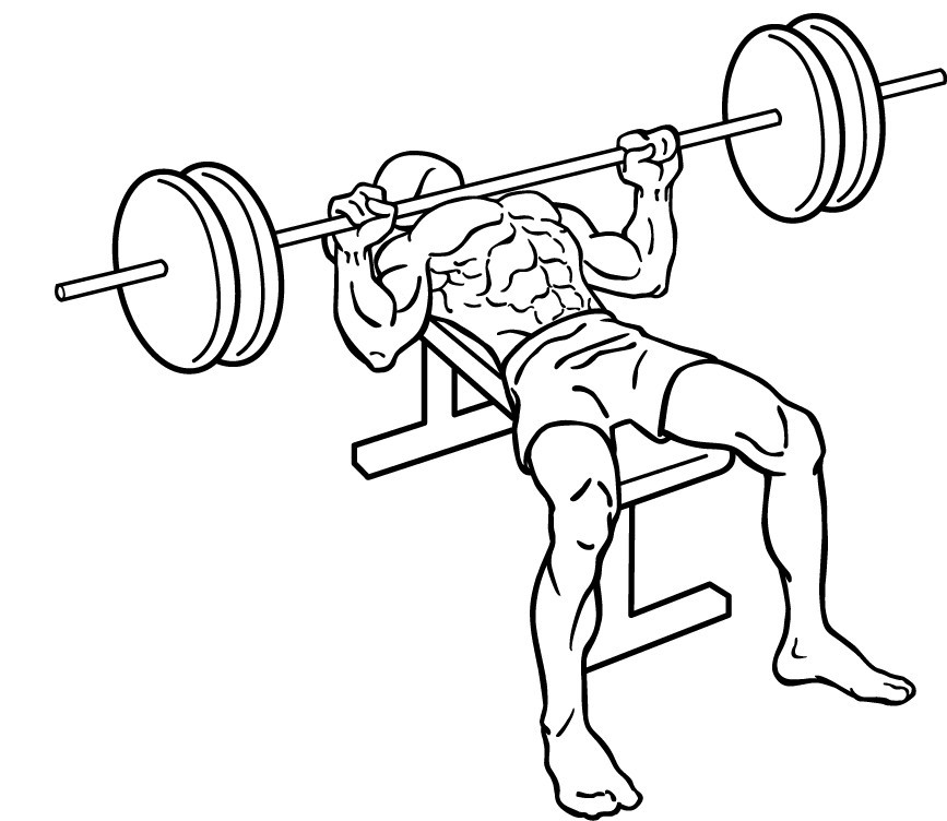 diagram of a man doing a flat bench press