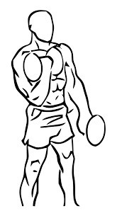 diagram of a man doing dumbbell twist curls