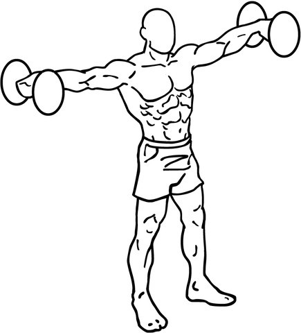 diagram of a man doing lat raises