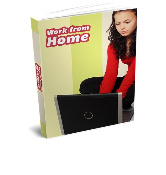 image of work from home book