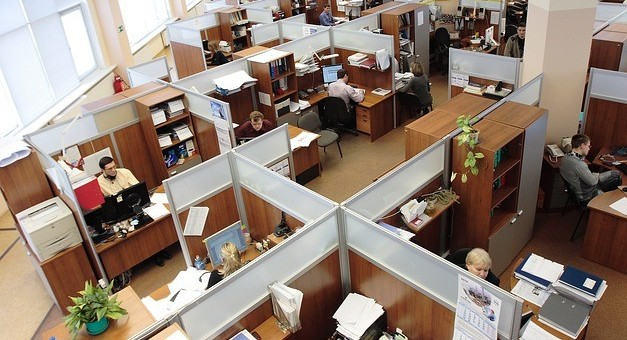 Image of a large cubicle office with many workers at desks