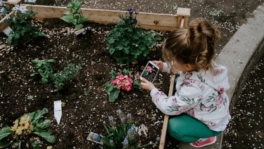 Image of girl planting seeds