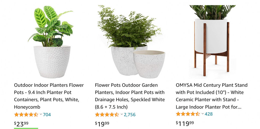 Indoor Plants Niche Site Idea