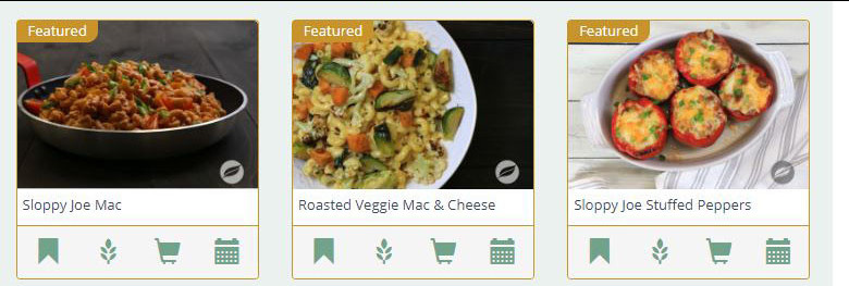 Wildtree MLM Review - Meal Dishes