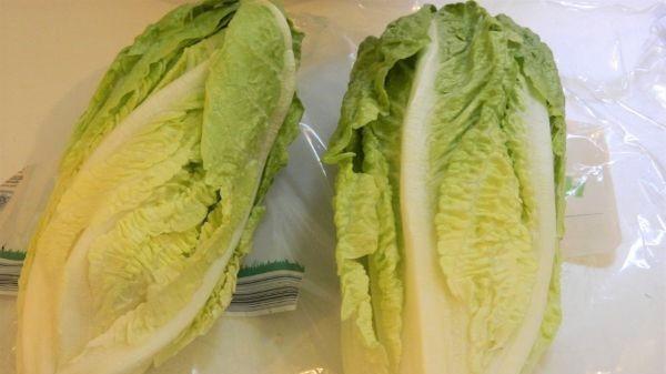 Romaine Lettuce Soup-Two Romaine Lettuce