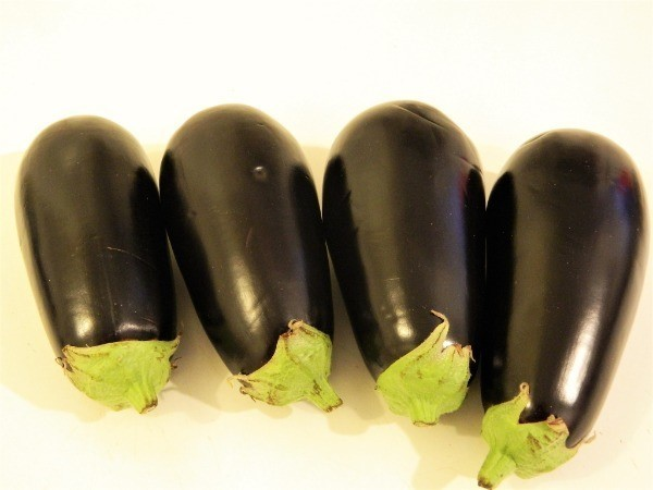 Four pieces of medium size of eggplants
