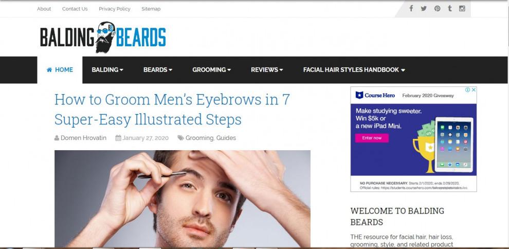 An Ordinary-looking Website