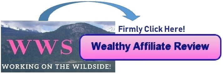 Meet Wealthy Affiliate